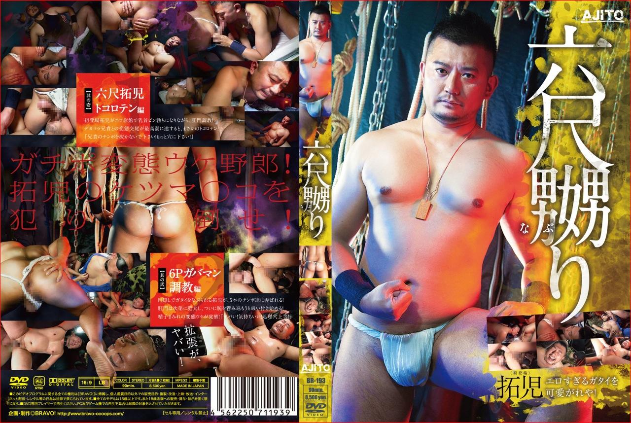 br-193_NASHI_2000